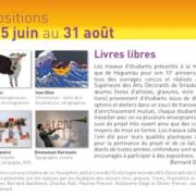 """Livres libres ""Médiathèque de Haguenau, 2011"